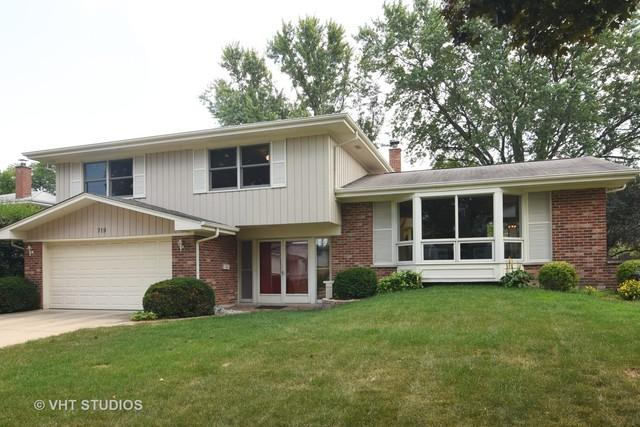 719 E Ivy Lane, Arlington Heights, IL 60004 (MLS #10130175) :: Baz Realty Network | Keller Williams Preferred Realty