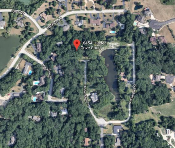 16454 Hidden Cove Court, Homer Glen, IL 60491 (MLS #10130198) :: Ani Real Estate