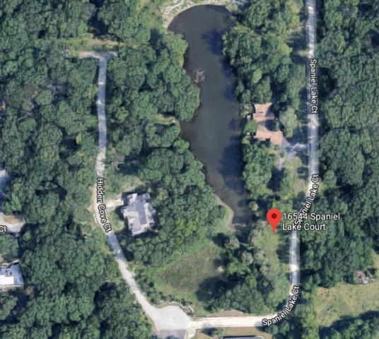 16544 Spaniel Lake Court, Homer Glen, IL 60491 (MLS #10130263) :: Ani Real Estate