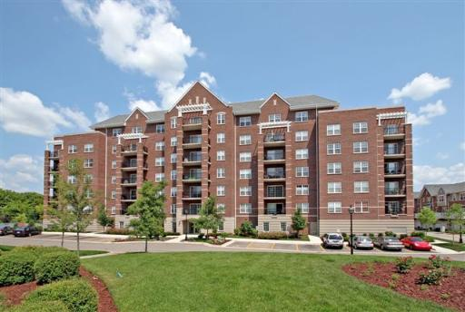 410 W Mahogany Court #501, Palatine, IL 60067 (MLS #10130570) :: Baz Realty Network | Keller Williams Preferred Realty