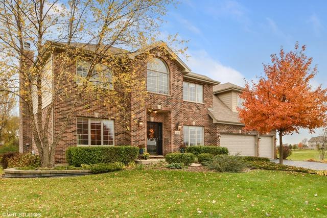 22761 Stanford Drive, Frankfort, IL 60423 (MLS #10130809) :: John Lyons Real Estate