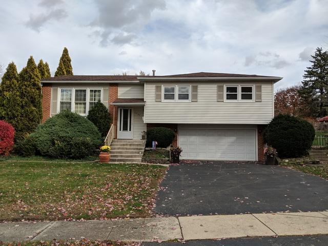 7759 Catalpa Avenue, Woodridge, IL 60517 (MLS #10130861) :: Domain Realty