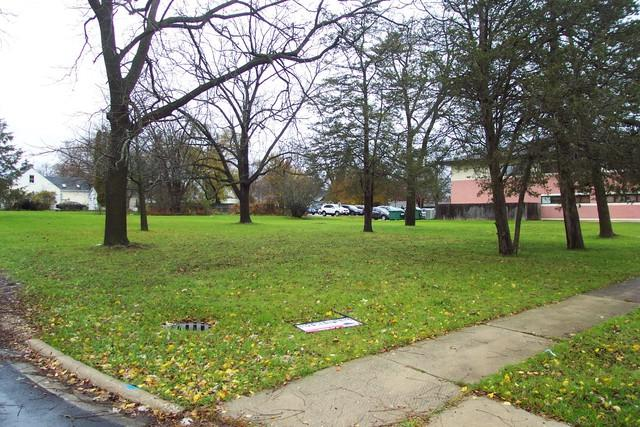 479 Naber Avenue, Antioch, IL 60002 (MLS #10131143) :: Domain Realty
