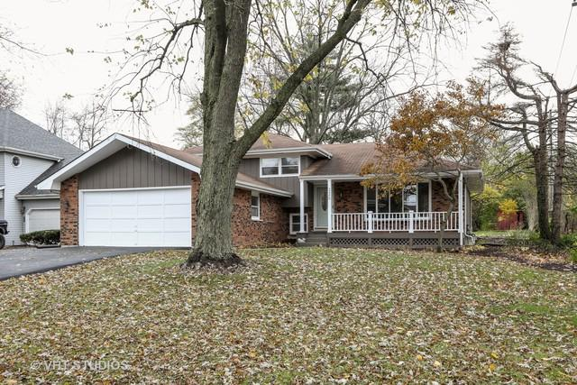 329 N Lincoln Street, Westmont, IL 60559 (MLS #10131155) :: Ani Real Estate