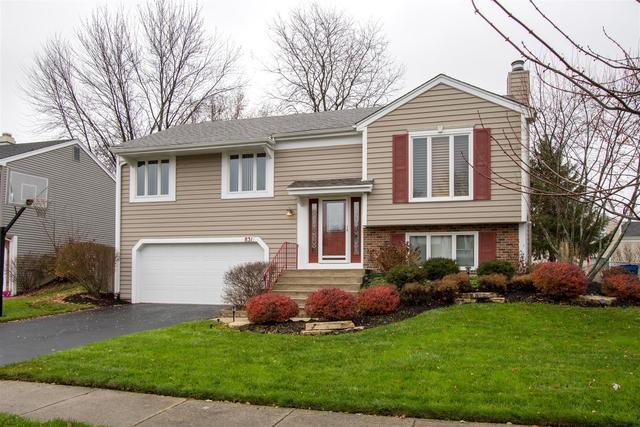 831 S Cleburne Avenue, Bartlett, IL 60103 (MLS #10131300) :: Ani Real Estate