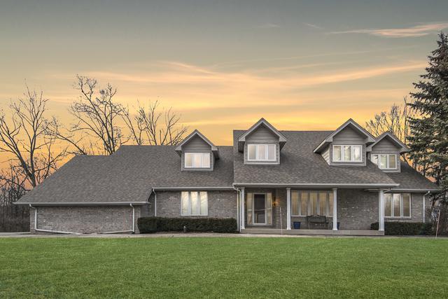 13738 Quail Run Court, Homer Glen, IL 60491 (MLS #10131366) :: Ani Real Estate