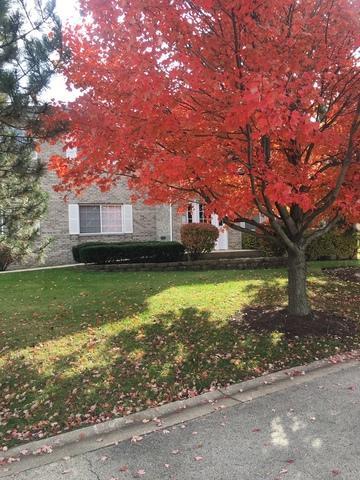 962 Constance Lane #962, Sycamore, IL 60178 (MLS #10131457) :: Ani Real Estate