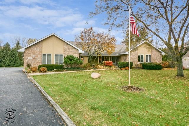 15110 Wood Duck Lane, Homer Glen, IL 60491 (MLS #10131838) :: Ani Real Estate