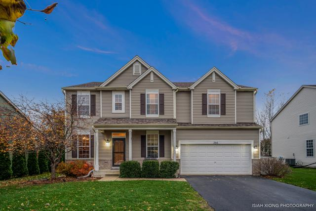 266 Blazing Star Drive, Minooka, IL 60447 (MLS #10132391) :: Domain Realty