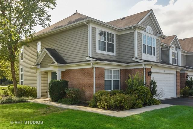 381 S Crown Court, Palatine, IL 60074 (MLS #10132519) :: Baz Realty Network   Keller Williams Preferred Realty