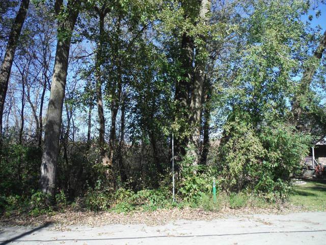 207 Plum Street, Lake In The Hills, IL 60156 (MLS #10132558) :: Lewke Partners