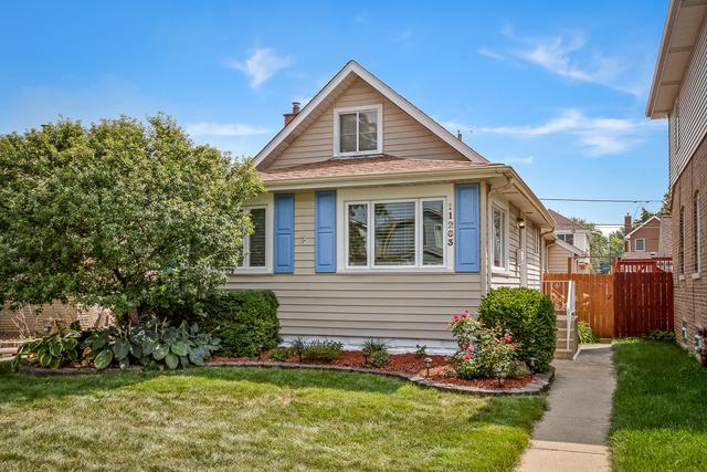 11263 S Drake Avenue, Chicago, IL 60655 (MLS #10132696) :: Domain Realty