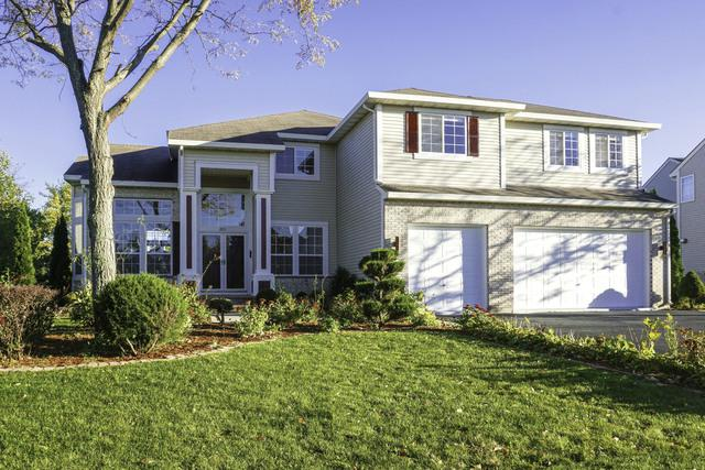 1051 Franklin Street, Mundelein, IL 60060 (MLS #10132769) :: Helen Oliveri Real Estate