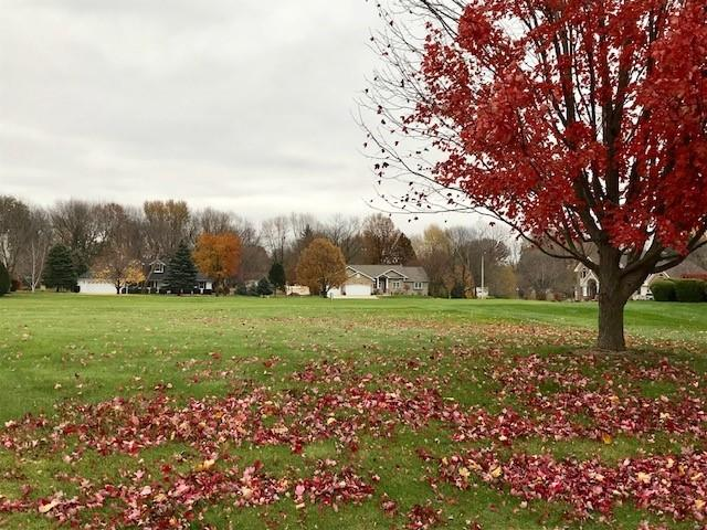 Lot 13 32nd Avenue, Sterling, IL 61081 (MLS #10132867) :: Ani Real Estate