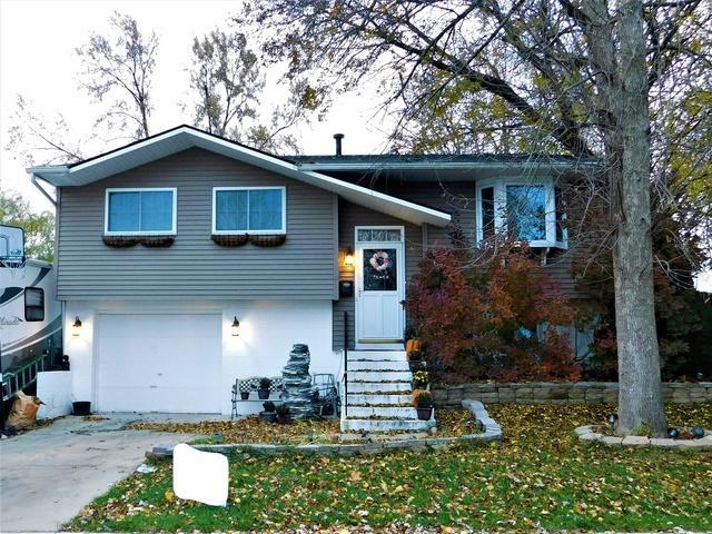 705 Yates Avenue, Romeoville, IL 60446 (MLS #10133248) :: Ani Real Estate