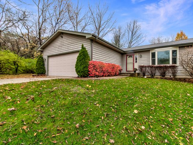 183 Iona Terrace, Algonquin, IL 60102 (MLS #10133370) :: Ani Real Estate