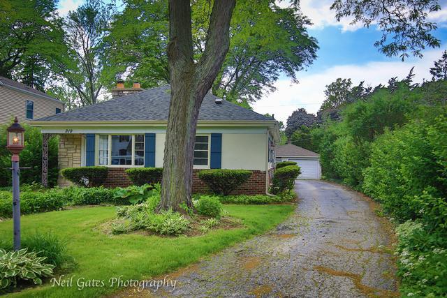 310 S Prospect Street, Wheaton, IL 60187 (MLS #10133391) :: Domain Realty