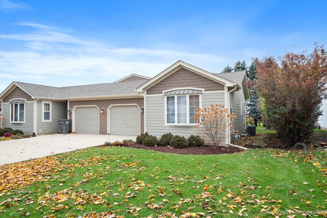 171 Meadows Drive, Sugar Grove, IL 60554 (MLS #10133557) :: The Dena Furlow Team - Keller Williams Realty