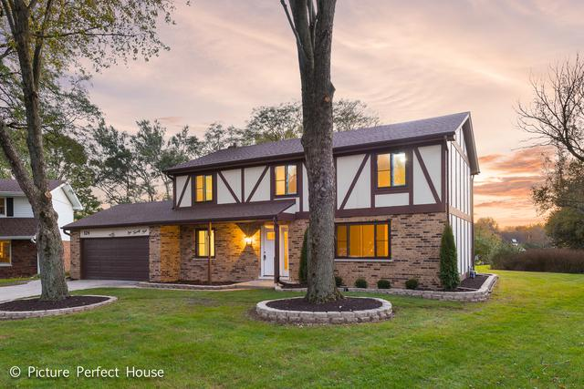124 Tanager Court, Naperville, IL 60565 (MLS #10133568) :: Ani Real Estate