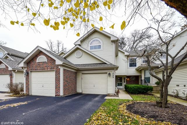 723 Shady Oaks Court, Elgin, IL 60120 (MLS #10133873) :: Ani Real Estate