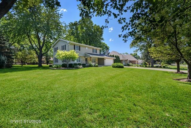 5S351 Columbia Street, Naperville, IL 60563 (MLS #10133942) :: Ani Real Estate