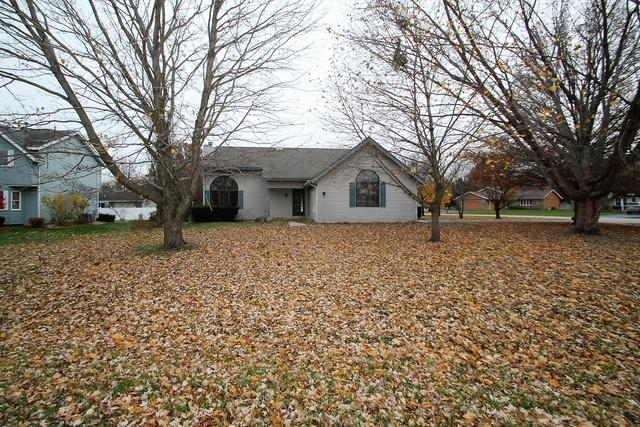 1119 Sandpebble Drive, Rockton, IL 61072 (MLS #10133950) :: The Dena Furlow Team - Keller Williams Realty