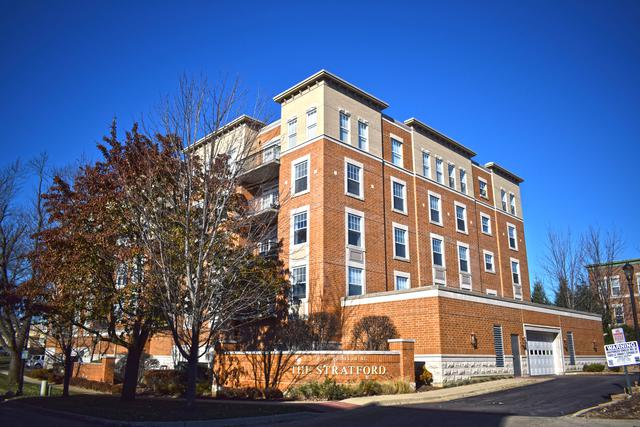 190 W Johnson Street #206, Palatine, IL 60067 (MLS #10134957) :: T2K Properties