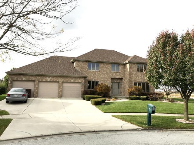 19320 Kickapoo Drive, Tinley Park, IL 60487 (MLS #10135067) :: Ani Real Estate