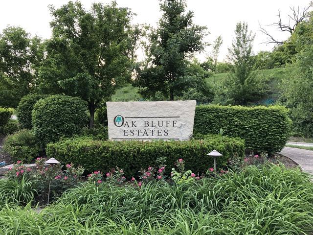 LOT 22 Pin Oak Court, Woodridge, IL 60517 (MLS #10135120) :: Ani Real Estate