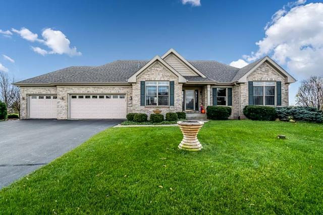 2925 Rolling Meadow Court, Belvidere, IL 61008 (MLS #10135141) :: Fidelity Real Estate Group