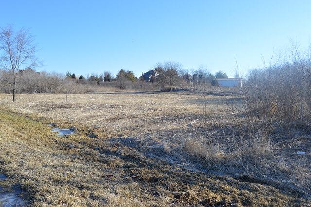 16235 S Peppermill Trail, Homer Glen, IL 60491 (MLS #10135162) :: Ani Real Estate