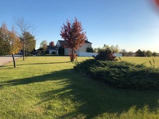 Lot 47 International Way Drive, Joliet, IL 60436 (MLS #10135283) :: Ani Real Estate