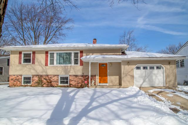 1000 Beechwood Road, Buffalo Grove, IL 60089 (MLS #10135306) :: Helen Oliveri Real Estate