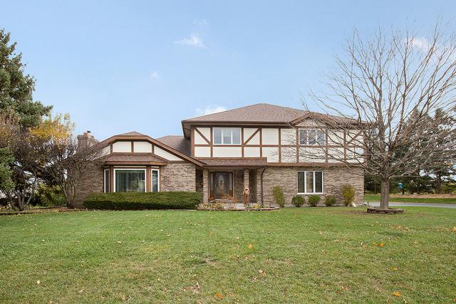 15051 S Woodcrest Avenue, Homer Glen, IL 60491 (MLS #10135407) :: Ani Real Estate
