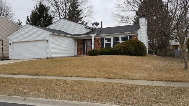 2115 Briar Hill Drive, Schaumburg, IL 60194 (MLS #10135415) :: Domain Realty
