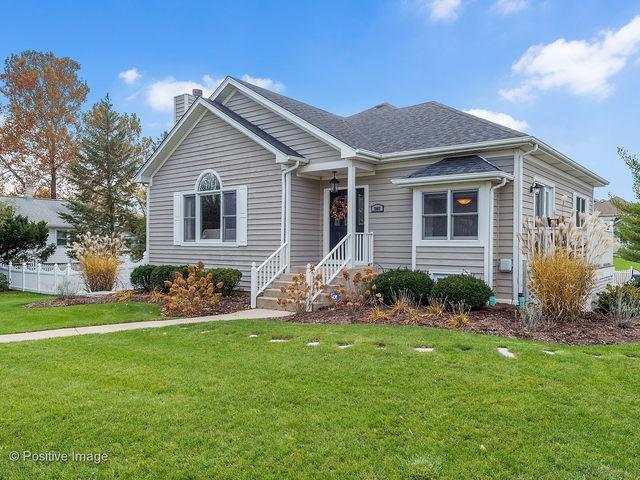 3902 Douglas Road, Downers Grove, IL 60515 (MLS #10135893) :: Ani Real Estate