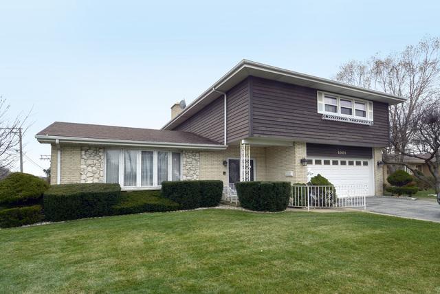 1001 S Lancaster Street, Mount Prospect, IL 60056 (MLS #10136071) :: Ani Real Estate