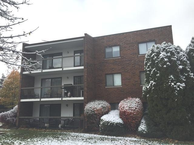 620 S York Road #305, Bensenville, IL 60106 (MLS #10136082) :: Ani Real Estate