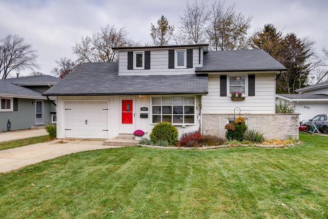 1015 Dawes Avenue, Wheaton, IL 60189 (MLS #10136088) :: Ani Real Estate