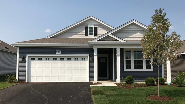 1020 Americana Avenue, Pingree Grove, IL 60140 (MLS #10136147) :: Fidelity Real Estate Group