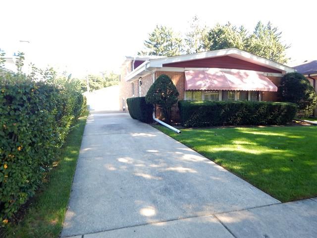 8939 Mango Avenue, Morton Grove, IL 60053 (MLS #10136254) :: Ani Real Estate