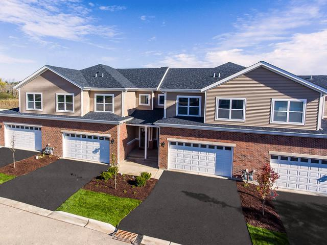2393 Irene Drive, Palatine, IL 60074 (MLS #10136327) :: Fidelity Real Estate Group