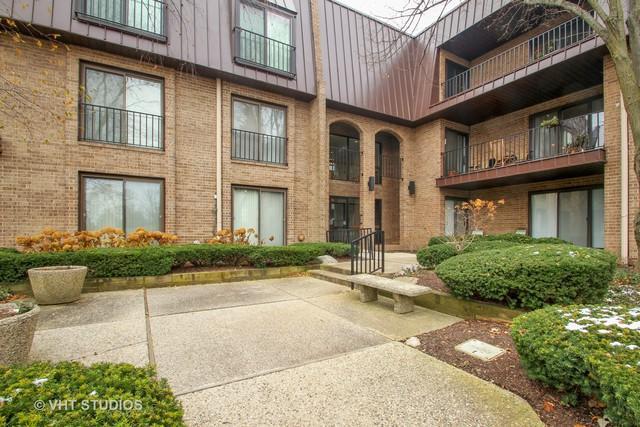2 The Court Of Harborside Court #308, Northbrook, IL 60062 (MLS #10136435) :: Helen Oliveri Real Estate