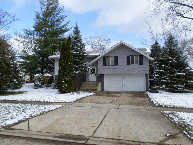537 Norwood Lane, Schaumburg, IL 60193 (MLS #10136471) :: Domain Realty