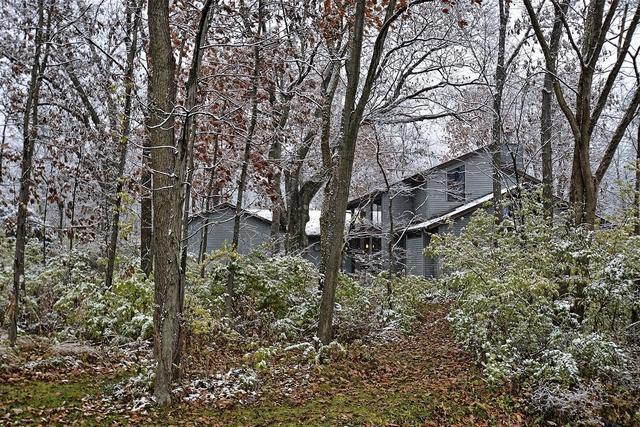 19831 Woodside Drive, New Lenox, IL 60451 (MLS #10136585) :: Domain Realty