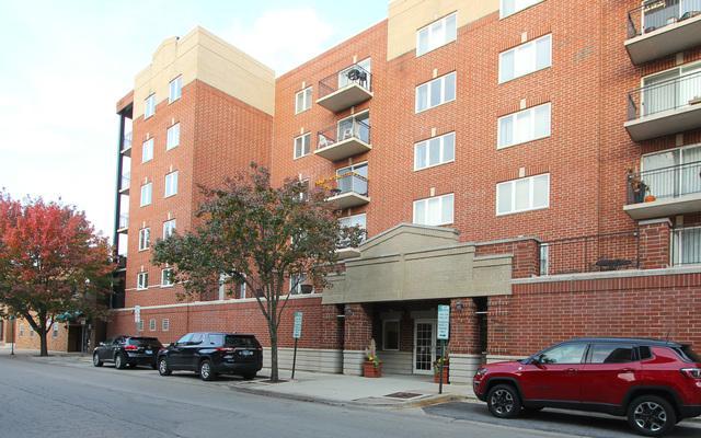 3303 Grove Avenue #306, Berwyn, IL 60402 (MLS #10136679) :: Ani Real Estate