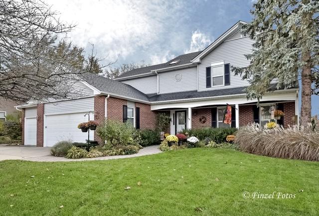 317 Bryan Drive, Cary, IL 60013 (MLS #10136735) :: Lewke Partners