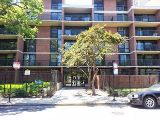 2921 S Michigan Avenue #510, Chicago, IL 60616 (MLS #10136839) :: Domain Realty