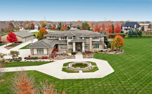 23023 S Scheer Road, Frankfort, IL 60423 (MLS #10136871) :: Ani Real Estate