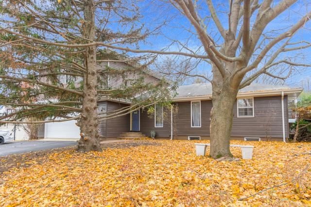 23357 W Feeney Drive, Plainfield, IL 60586 (MLS #10136919) :: Domain Realty